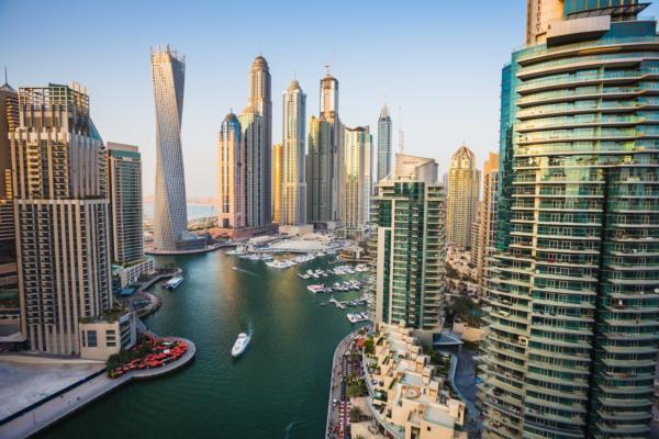 Dubai mandates digital identity system for government services