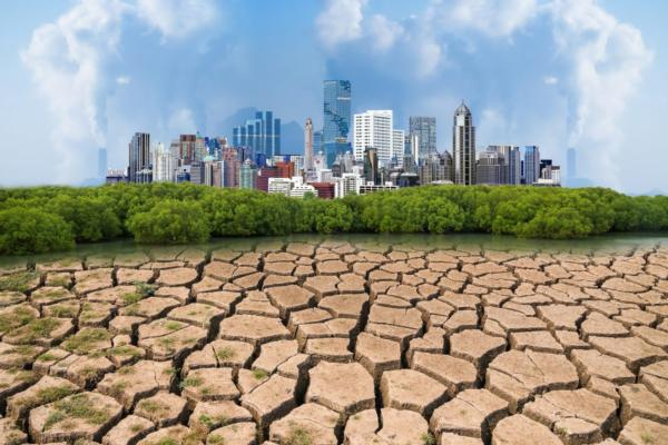Helping cities finance climate mitigation