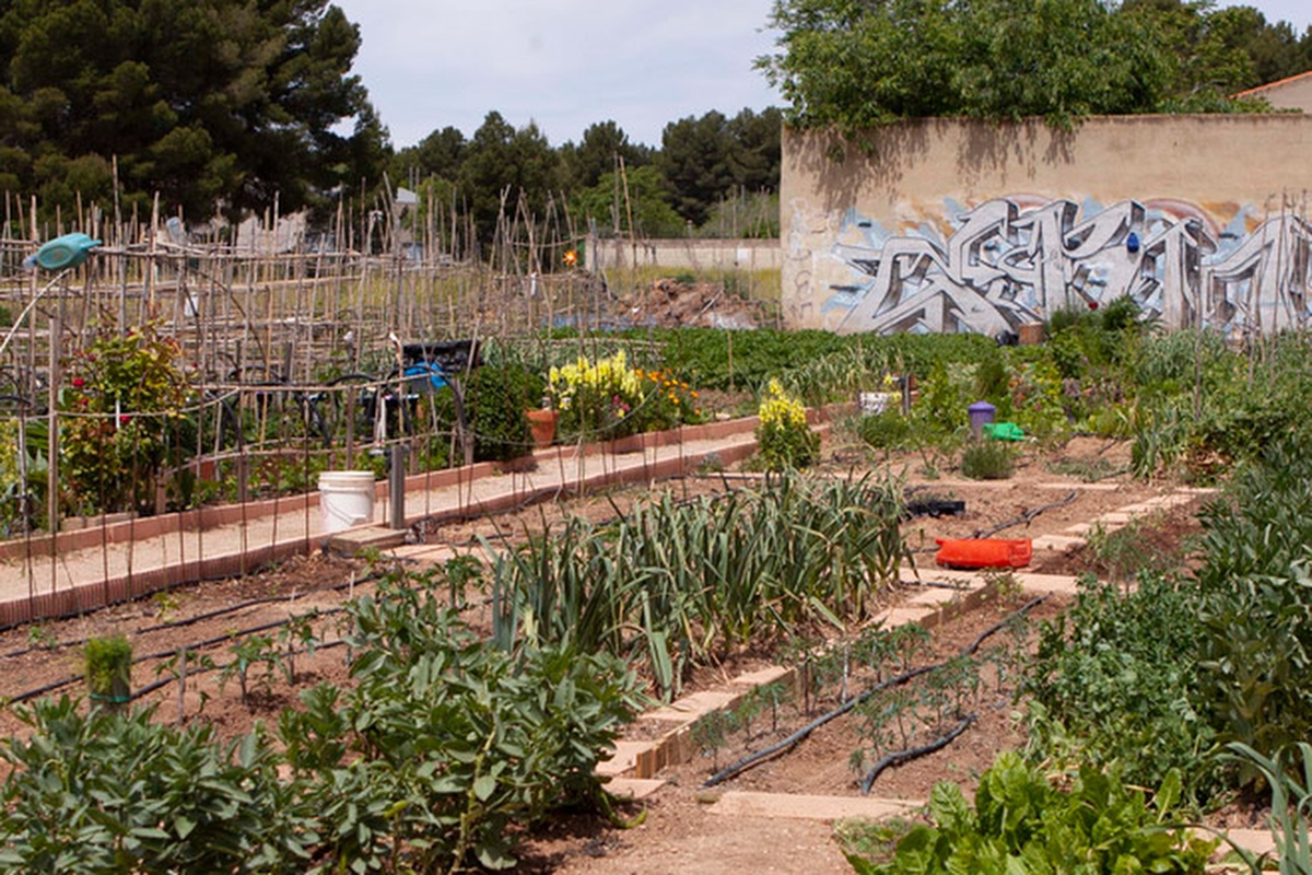 The social garden project in the city of Albacete brings generations together
