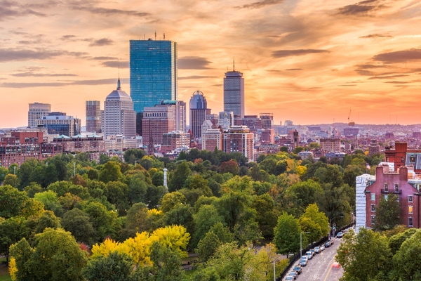 Boston progresses plans for its urban forest