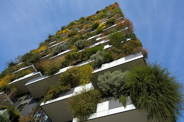 Eindhoven social housing development integrates a vertical forest